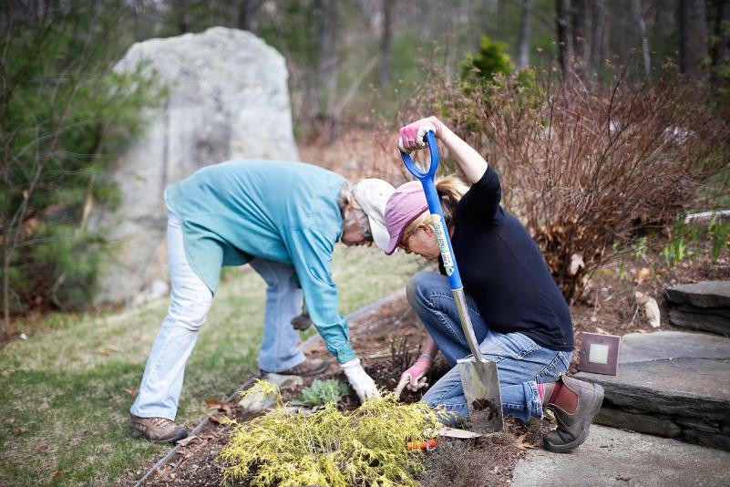 DAN LITTLE Karen Chrisman, left, and Meredith Michaels dig up plants to divide and sell at the Amherst Garden Club's annual plant sale at Chrisman's home Wednesday in Belchertown.